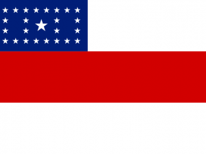 Bandera Amazonas
