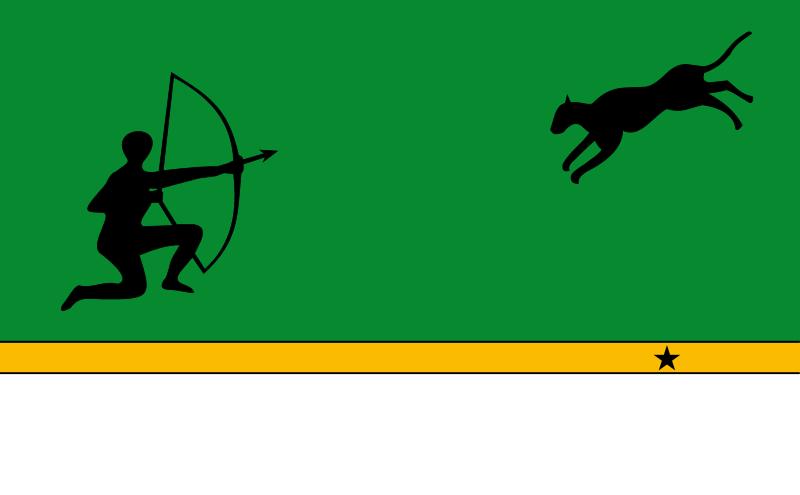 Bandera Amazonas (Colombia)