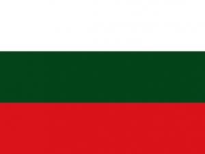 Bandera Arauca