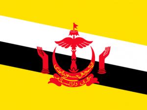 Bandera Brunéi