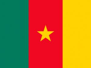 Bandera Camerún