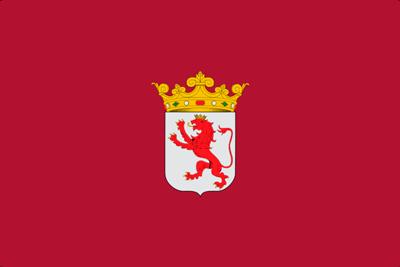 Bandera Provincia de León