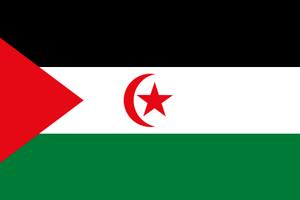 Bandera República Árabe Saharaui Democrática