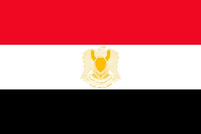 Bandera Siria con Escudo