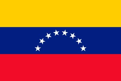 Bandera Venezuela 8 estrellas sin escudo