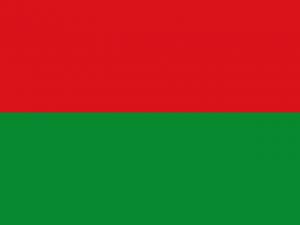 Bandera Departamento de Arauca