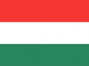 Bandera Estelí