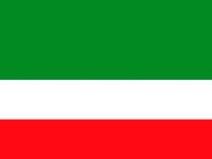 Bandera Florencia (Colombia)