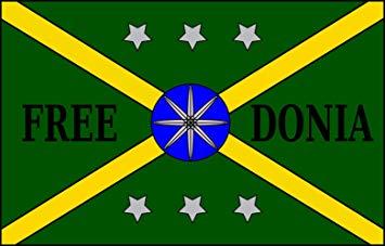 Bandera Freedonia