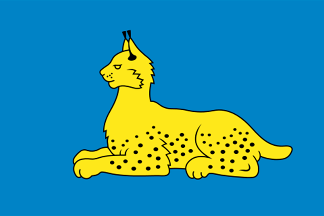 Bandera Gómel