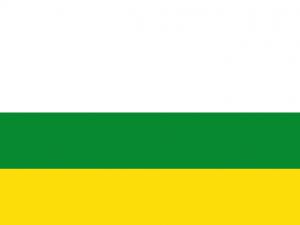 Bandera Gómez Plata