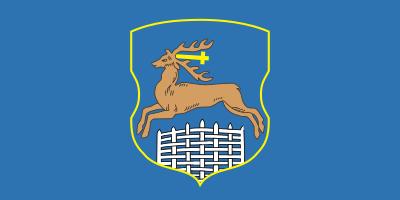 Bandera Grodno