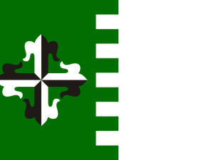 Bandera Guaynabo
