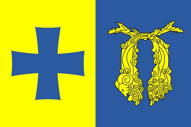 Bandera Poti