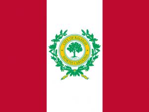 Bandera Raleigh