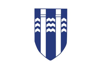 Bandera Reikiavik