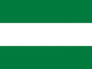 Bandera Santa Cruz de la Sierra