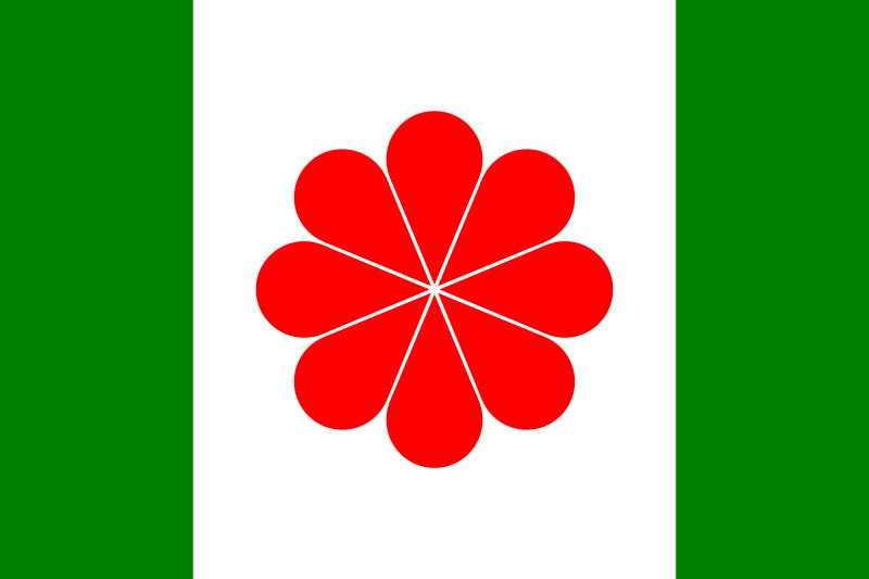Bandera Taiwán independentista