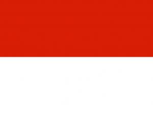 Bandera Tarija