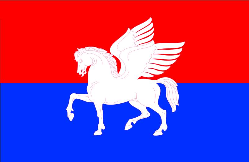 Bandera Telavi