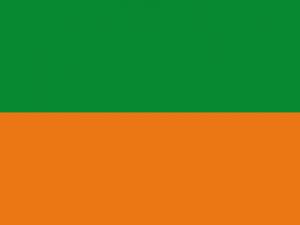Bandera Zaragoza (Colombia)