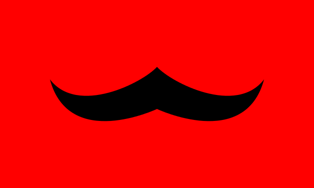 Bandera Borduria