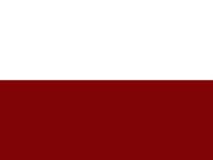 Bandera Cisneros