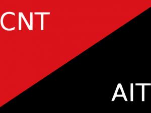 Bandera CNT-AIT