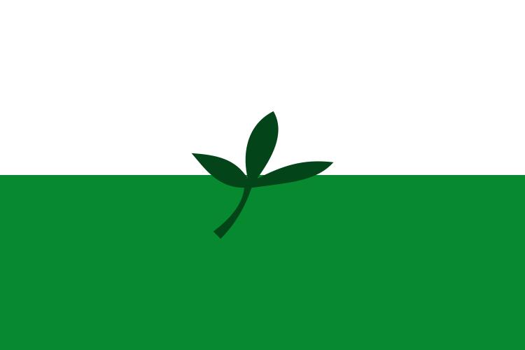 Bandera Departamento de Vaupés