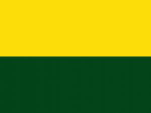 Bandera Frontino