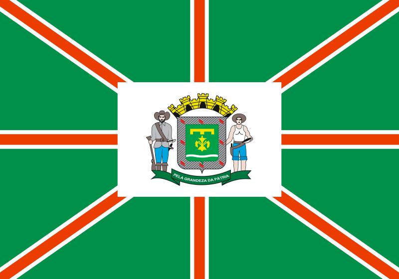 Bandera Goiânia
