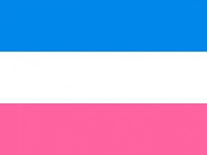 Bandera Heterosexual