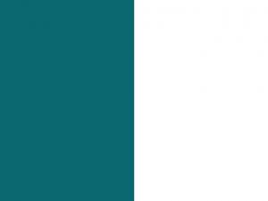 Bandera Huancayo