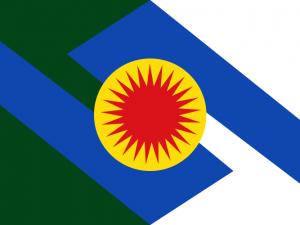 Bandera Inírida