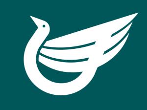 Bandera Itami (Hyogo)