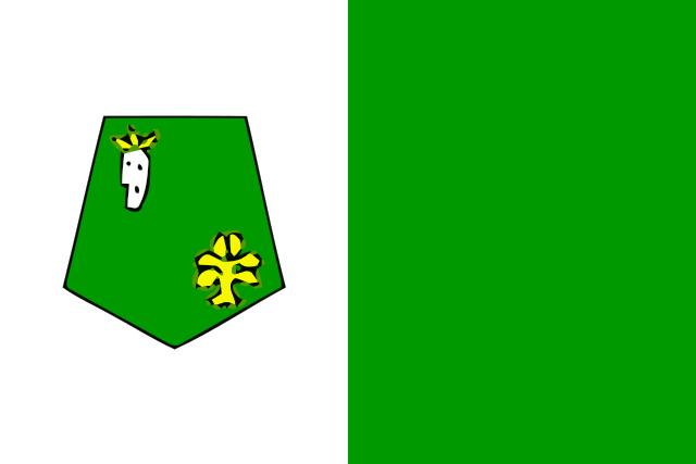 Bandera Kenitra