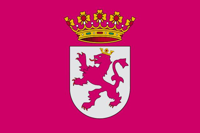 Bandera Leonesismo
