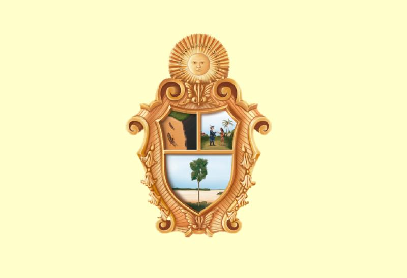 Bandera Manaus