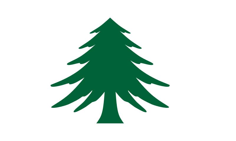 Bandera Massachusetts Marítima