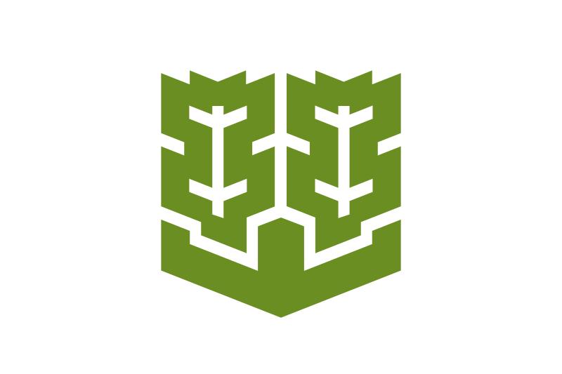 Bandera Matsuyama
