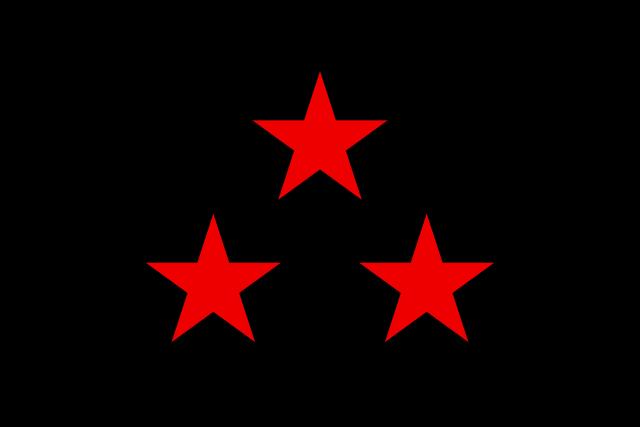 Bandera Nuevo Rico