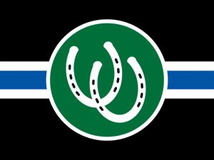 Bandera Pony PRIDE