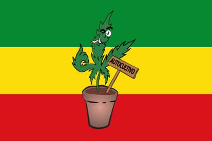 Bandera Rasta autocultivo 2