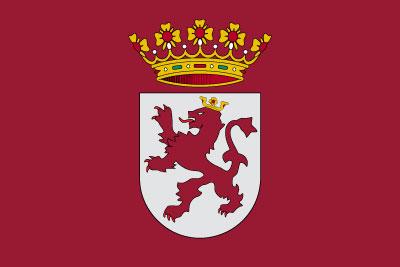 Bandera Región de León