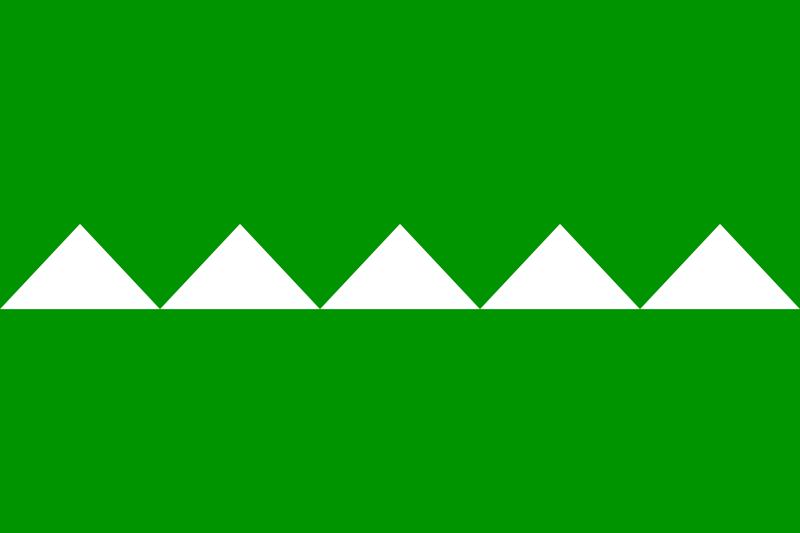 Bandera Salinas