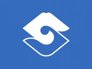 Bandera Shizuoka
