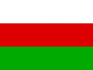 Bandera Sincelejo