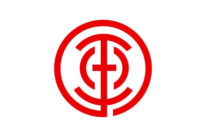 Bandera Tamano