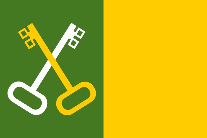 Bandera Toa Baja