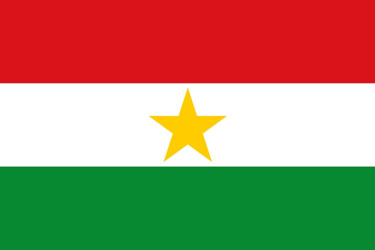 Bandera Yarumal